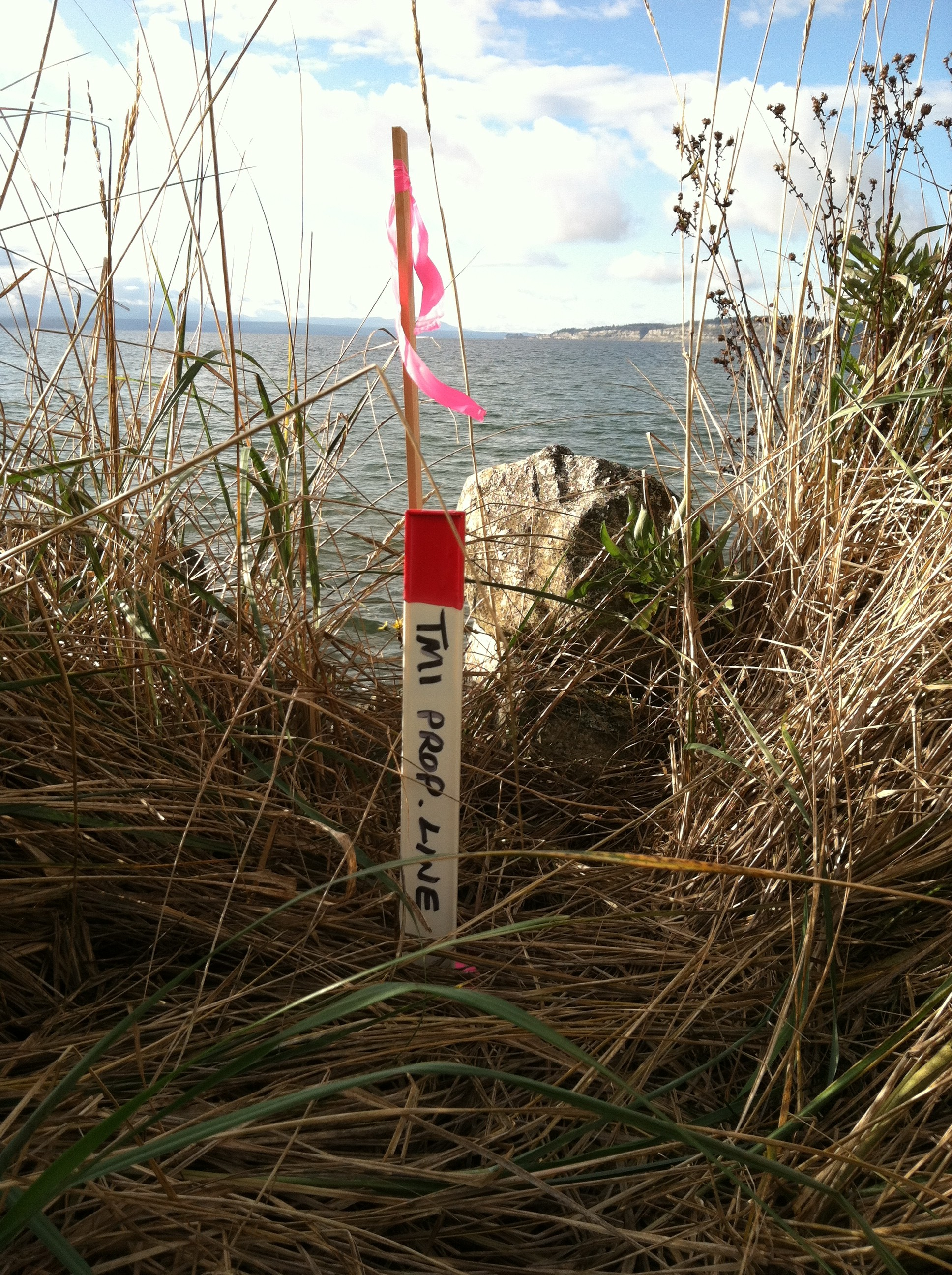 whidbey island land surveyors